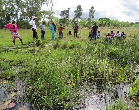 The WeMAST consortium engages with the local Chirumhanzu community at the Driefontein RAMSAR wetland